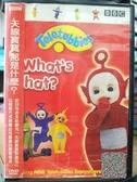 挖寶二手片-B53-正版DVD-動畫【天線寶寶:那是什麼】-國英語發音(直購價)