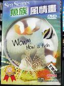 挖寶二手片-P06-450-正版DVD-電影【魚族風情畫】-美麗的深邃藍色世界,深入海洋的神秘