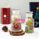 韓國 悅詩風吟 innisfree 2017 綠色聖誕 心願滿滿 聖誕老人香氛花 10g 紅/綠【特價】★beauty pie★