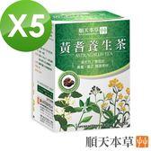 【順天本草】黃耆養生茶5盒組(10入/盒X5)