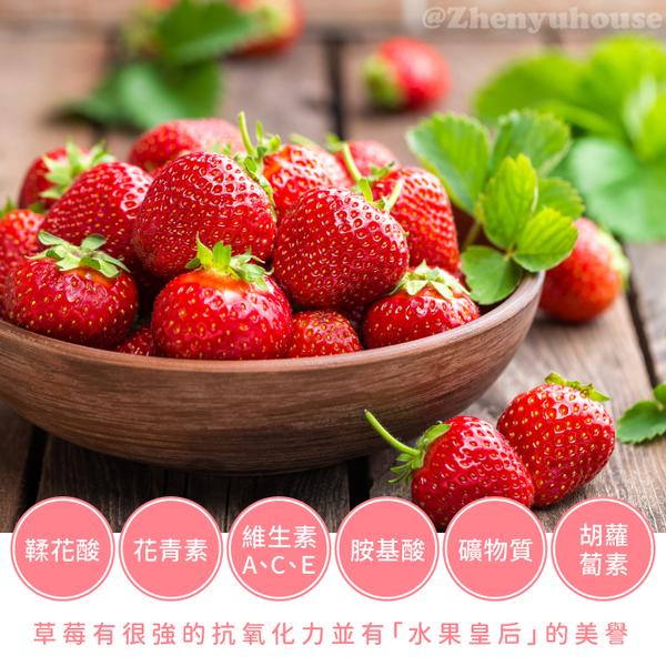 大湖草莓乾-果乾-200g 臻御行