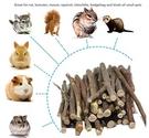 CCS-5 老鼠兔子磨牙木棒  寵物潔牙棒 齧齒類動物磨牙 天然磨牙木棒 美國寵物第一品牌LIXIT® 立可吸
