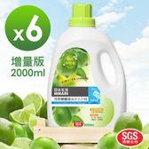 HIKARI日光生活-買3送3檸檬精油洗衣精(增量版) 2000mlx6