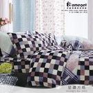 家適得『法蘭絨系列-星鑽方格』雙人加大床包兩用毯四件組-6X6.2尺-鑽石絨/發熱/熱感