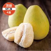 【鮮食優多】清泉 麻豆30年老欉頂級文旦5斤裝4盒(好評預購中!!30年老欉,柚香多汁)