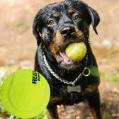 寵物玩具 寵物狗玩具球耐咬大型犬金毛薩摩耶磨牙玩具玩具網球貓玩具球