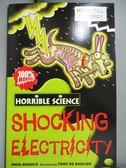 【書寶二手書T1/原文小說_NPB】Horrible Science Shocking Electricity_尼克阿諾德