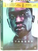 影音專賣店-P01-021-正版DVD*電影【月光下的藍色男孩】-奧斯卡最佳影片