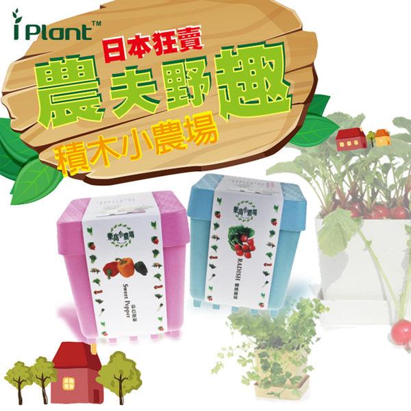 iPlant積木農場-五彩辣椒