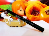 SHISEIDO 資生堂 引釉眼彩筆0.8g 全新百貨公司專櫃貨裸裝 #06,07, 08, 10
