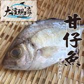 新鮮現撈 甘仔魚 / 瓜仔魚 ( 中尾 300g-400g±10%_一公斤 )【大溪現流】