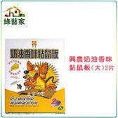 【綠藝家】興農奶油香味黏鼠板(大)