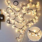房間臥室裝飾led樹枝藤條彩燈閃燈串燈滿天星星圓球店鋪布置婚慶父親節禮物