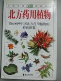 【書寶二手書T8/科學_HMY】北方藥用植物_丁學欣 編