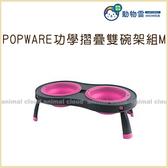 寵物家族-POPWARE功學摺疊雙碗架組-M