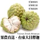 【果農直送-大顆】 台東大目釋迦x1盒(12-13顆/10台斤±10%)