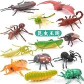 兒童昆蟲玩具塑膠仿真動物模型蜘蛛蝴蝶蜜蜂蜈蚣螞蟻大小擺件套裝 聖誕節全館免運
