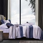 Artis 台灣製 天絲兩用被床包四件組(雙人特大)-惜時-藍