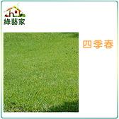 【綠藝家】四季春草皮種子1公斤裝