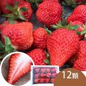 天藍果園-大湖草莓(12顆)含運組