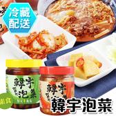 韓宇泡菜600g 正宗韓式泡菜/台式素蘿蔔 冷凍配送 [CO800]千御國際