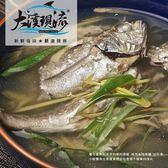 野生現撈 黑喉魚 ( 大尾 350g±10%_尾 )【大溪現流】