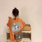 秋冬衛衣年新款女裝秋季寬鬆韓版潮長袖上衣初秋外套 伊羅 新品
