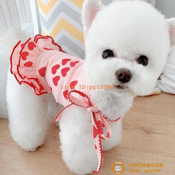 滿印愛心情侶裝寵物狗狗貓咪衣服幼犬泰迪比熊貴賓夏季薄款小型犬小狗狗【小獅子】
