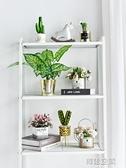 北歐ins仿真多肉仙人掌植物創意桌面客廳裝飾小假花擺件綠植盆栽