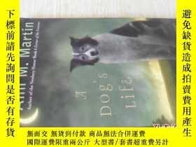 二手書博民逛書店英文原版罕見A Dog s Life: Autobiography of a StrayY7215 Ann M