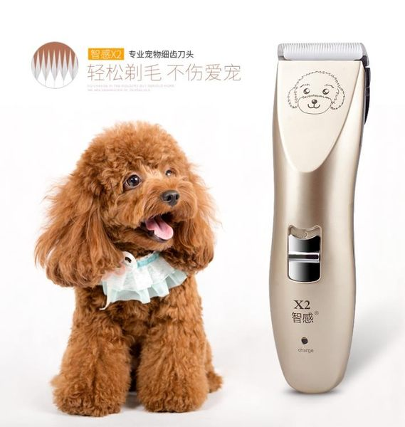 寵物電推剪給小狗狗剃毛器泰迪剪毛神器推毛器 WD2288【衣好月圓】TW