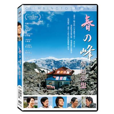 春之峰攀越夢想DVD 松山研一/蒼井優