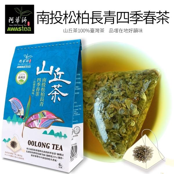 【阿華師茶業】南投松柏長青四季春茶(比賽茶風味)