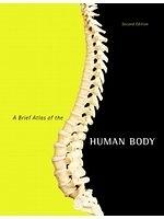 二手書博民逛書店《A Brief Atlas of the Human Body
