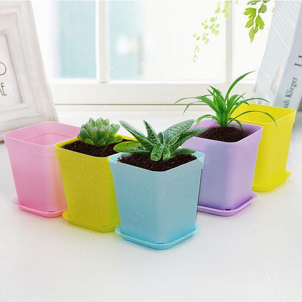 創意桌面盆栽花盆 適合多肉植物個性花盆 可配托盤塑料迷你小花盆