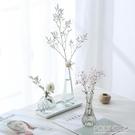 花瓶 透明玻璃瓶水培植物容器綠蘿養花小花瓶幹花插花客廳擺件裝飾花盆 polygirl