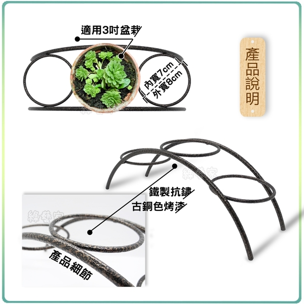 【綠藝家】拱型小花架(桌上型園藝小花架)
