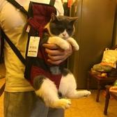 寵物外出便攜背帶胸前雙肩貓包貓咪攜帶書包狗狗神器背包貓袋透氣 陽光好物