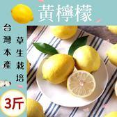 草生栽培!味道柔和·黃檸檬3斤(含運組)