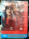 挖寶二手片-T03-550-正版DVD-日片【像戀人一樣】-高梨臨 奧野雅史 加瀨亮(直購價)