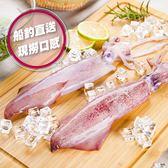 揪團最便宜【吃浪食品】鮮甜活凍船釣大透抽6包組(450g±10%/1包2隻)