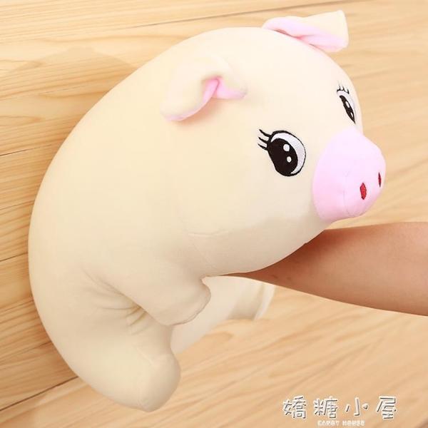 可愛豬豬玩偶毛絨玩具公仔女生兒童生日禮物生肖豬年布娃娃吉祥物  嬌糖小屋