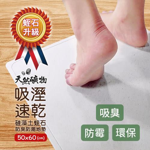 【泰厲害】硅藻土蛭石防臭防潮地墊/吸水地墊(50X60)