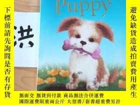 二手書博民逛書店The罕見Scruffy PuppyY15335 Holly Webb 出版2014
