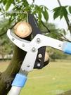 進口粗枝剪高枝修枝剪樹枝果樹綠化花園藝剪刀伸縮大力剪園林工具 WD 一米陽光
