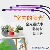 哈哈笑 多肉補光燈 USB夾子式上色防徒全光譜LED花卉植物燈生長燈 快速出貨