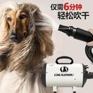 寵物烘乾機 春舟寵物吹風機狗狗吹水機大型犬吹毛神器烘干大功率靜音洗澡專用 8號店WJ