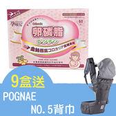 孕哺兒 卵磷脂燕窩細末 60入 9盒送 Pognae NO.5超輕量機能坐墊型背巾【德芳保健藥妝】