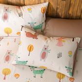 鴻宇 單人床包組 森林派對 美國棉授權品牌 台灣製2223