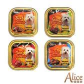 【愛麗絲】犬用餐盒-100g*48罐/箱【口味混搭】(C901A01-2)